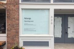 Aesop-1